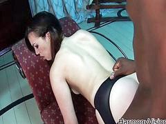 Interracial anal, Stockings anal, Big anal threesome, Stocking cum, Big cock anal, Anal interracial
