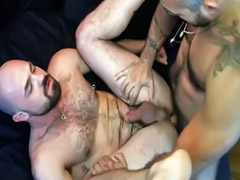 Hairy anal, Hairy cam, Hot muscular, Gay rimming, Hairy masturbation, Anal hairy