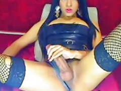 Shemale, Tranny, Amateur shemale, Tranny big cock, Big cock shemale, Webcam brunette