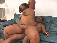 Bbw, Hardcore, Couple