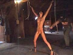 Flogged, Properly, Flogging
