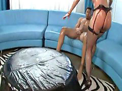 Oil, Kelly divine, Kelly d, Oiled, Kelly, Kelli