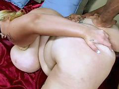 Bbw, Lisa canon, Bbw black, Hammers, Hammered, Black bitchs