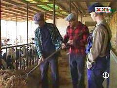 In farm, Farm p o r n, Farm,, Farm