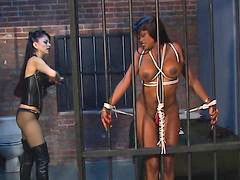 Bound, Chick with huge tits, Huge sex, Tits ebony, Tits bound, Tit bound