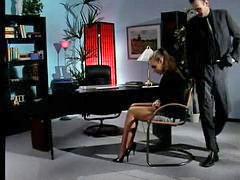 絲襪秘書, 秘書