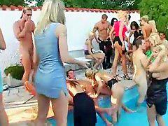 Pool orgies, Orgy pool, Pool orgie, Pool orgy