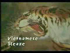 Sleaze, Vietnam, Vietnamese, Viet