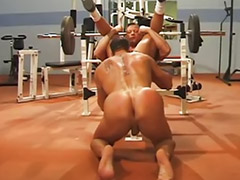 Muscle, Gym, Gay muscle, Hot muscular, Muscled, Big cock anal