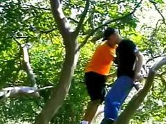 Lízání análu, Stromy