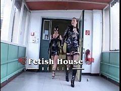House, No!please, No일본, Noña, Noño, Dıno