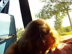 Public, Bus, Public bus