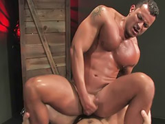 Hot muscular, Gay blowjobs, Angel hot, Muscularía, Muscular gays, Mart