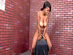 Sybian, Black big tit, Big tit black, Black big tits, Black tits, Big black tits