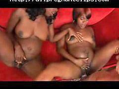 Orgy, Pregnant, 6 inch, Inc, Preggo, Pregnant x