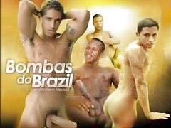Brazil, Vıdos, Édos, Vıdo, Pés brazil, Doş