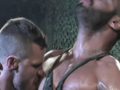Hot muscular, Muscular gays, Mart, Landon, Alexä, Alexes