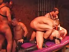 Orgy gay, Gay rimming, Big cock anal, Rim job, Group orgy, Anal group