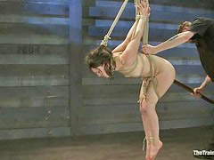 Tied, Tied up, Tie up, X x x fu c k, Ties up, Tied and toyed