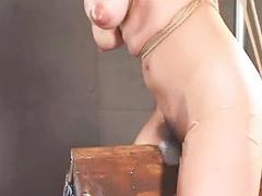 Bondage, Japanese bondage