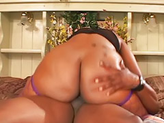 Chubby ebony, Big black asses, Stocking cum, Ebony black, Ebony big tits, Big booty