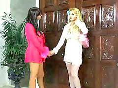 Game, Taylor wane, Summer, Summer cummings, Lezzie, Lezzies