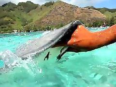 Vacations, Vacationing, Tahiti, Colby, Vacation