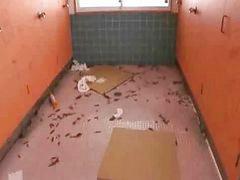 화장실, 변기, 용변