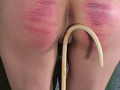 Caning, Caned, F-m caning, Canings, Caneing, Canes